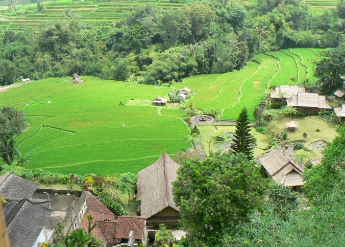 Les meilleures façons de profiter d'un séjour en Indonésie