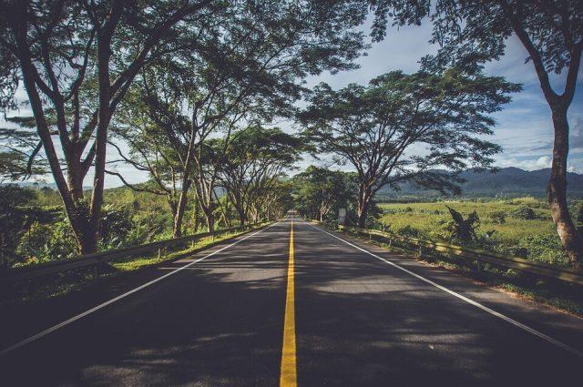 Formation à l'écoconduite sur simulateur de conduite : quels sont les avantages ?
